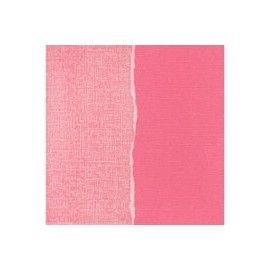 Papel básico scrapbooking. In the Pink. Core'dinations